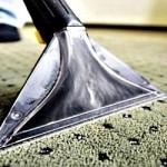 Snadný způsob, jak udržet vaše koberečky dokonale čisté, je použít hloubkové čištění